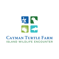 Cayman Turtle Center